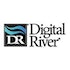 Hedge Funds Aren't Crazy About Digital River, Inc. (DRIV) Anymore