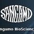 Sangamo Biosciences, Inc. (SGMO): Hedge Funds Are Bullish and Insiders Are Bearish, What Should You Do?