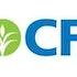 CF Industries Holdings, Inc. (CF), Inter Parfums, Inc. (IPAR): 5 Under-The-Radar Stocks Benjamin Graham Would Want To Own