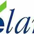Do Hedge Funds and Insiders Love Elan Corporation, plc (ADR) (ELN)?