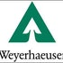 Do Hedge Funds and Insiders Love Weyerhaeuser Company (WY)?