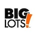 Big Lots, Inc. (BIG): Hedge Funds Are Bullish and Insiders Are Undecided, What Should You Do?