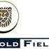 Gold Fields Limited (ADR) (GFI): Are Hedge Funds Right About This Stock?