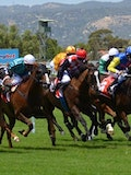 A Profitable Day At The Track: 5 Tips For Betting On Horses