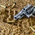 What Hedge Funds Think of Firearms Stocks
