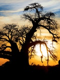 7 Best Places To Visit in South Africa Before You Die