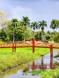 7 Best Places to Visit in Suriname Before You Die