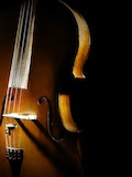 11 Most Expensive Musical Instruments in the World