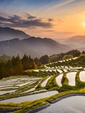 10 Most Advanced Countries in Agriculture