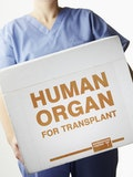 Countries Where You Can Legally Buy a Kidney or Other Organs