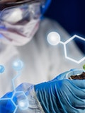11 Best Universities In The World For Biology