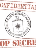 Top 15 Intelligence Agencies with Biggest Personnel Size