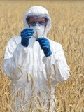 11 Countries That Produce The Most Genetically Modified Crops