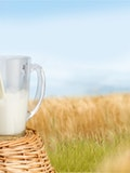 10 Healthiest Milk And Milk Alternatives For Toddlers And Kids