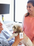 11 Best Small Service Dog Breeds For Therapy Work