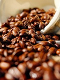 10 Countries with the Highest Coffee Consumption in the World