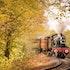 5 Best Railroad Stocks to Buy in 2021