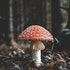 10 Best Psychedelic Companies to Watch