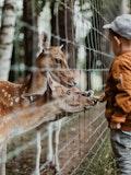 20 Best Zoos in the US